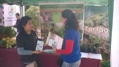 Norte Verde - Feria en Ballivian